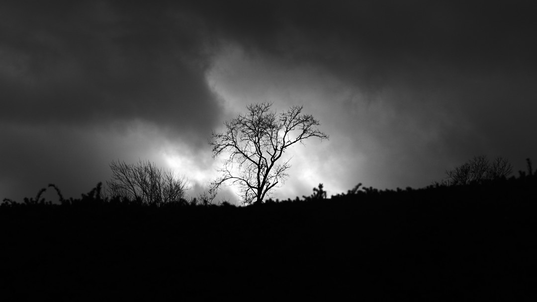 black and white fine art photography, Camp Hill, Pennsylvania, Pa, Harrisburg, nature, sky